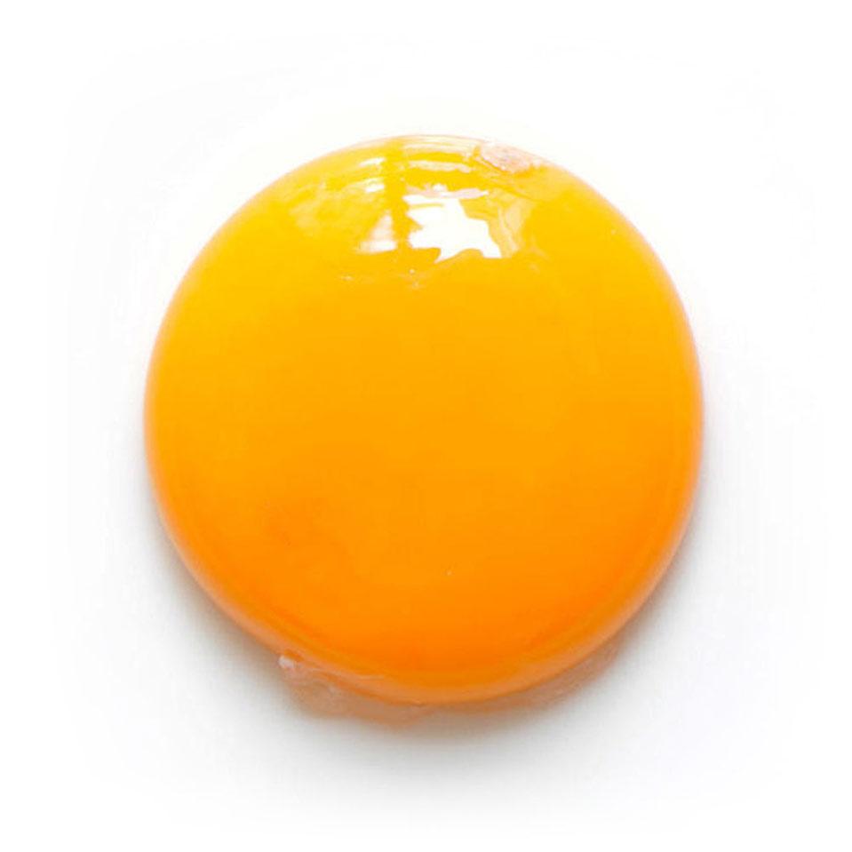 Egg Yolk fromEggs
